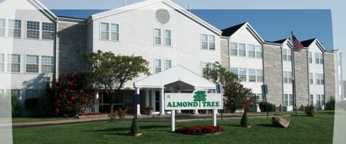 Almond Tree Apartments